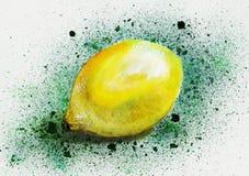 Λεμόνι watercolor Στοκ Φωτογραφίες