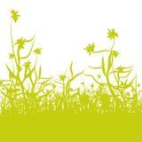 Λεπίδες της χλόης και των λουλουδιών Στοκ Εικόνες