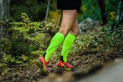 Λεπτά και όμορφα κορίτσια ποδιών Στοκ Εικόνες