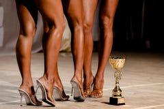 Λεπτά πόδια των αθλητών γυναικών Στοκ εικόνες με δικαίωμα ελεύθερης χρήσης