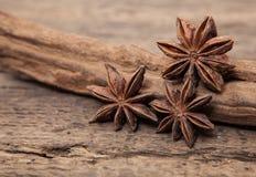 Λεπτά anis αστεριών Στοκ Εικόνες