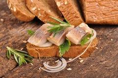 Λεπτές πικάντικες ρέγγες με το φρέσκο ψωμί σίκαλης στοκ φωτογραφία