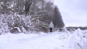 Λεπτή νέα γυναίκα στο γκρίζο σακάκι που περπατά σε έναν όμορφο χιονώδη χειμερινό δασικό 4K πυροβολισμό απόθεμα βίντεο