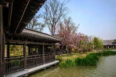 Λεπτή δυτική λίμνη Yangzhou στον κήπο της ελαφριάς στοάς περίπτερων κυμάτων Στοκ εικόνα με δικαίωμα ελεύθερης χρήσης