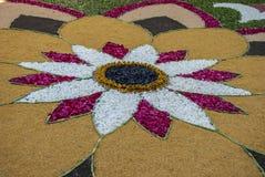 Λεπτομέρεια ένας από τους floral τάπητες του Corpus Christi Στοκ Φωτογραφία