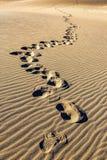 Λεπτομέρεια αμμόλοφων άμμου Στοκ εικόνες με δικαίωμα ελεύθερης χρήσης