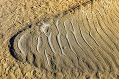 Λεπτομέρεια αμμόλοφων άμμου Στοκ φωτογραφία με δικαίωμα ελεύθερης χρήσης