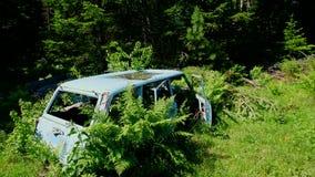 Λεπτομέρεια από ένα παλαιό εγκαταλειμμένο νεκροταφείο αυτοκινήτων Η φύση παίρνει αργά τη θέση φιλμ μικρού μήκους