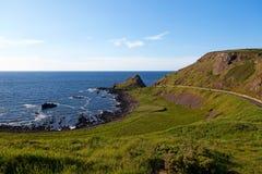 Λεπτομέρεια από το γιγαντιαίο υπερυψωμένο μονοπάτι, Ιρλανδία Στοκ Εικόνες