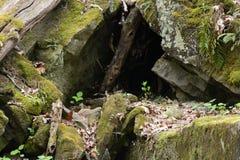 Λεπτομέρεια βράχου Στοκ Εικόνα