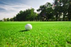 Λεπτομέρεια γηπέδων του γκολφ Στοκ Φωτογραφίες