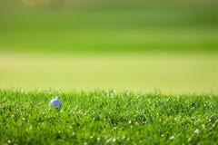 Λεπτομέρεια γηπέδων του γκολφ Στοκ φωτογραφίες με δικαίωμα ελεύθερης χρήσης