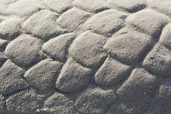 Λεπτομέρεια ενός γλυπτού ουρών γοργόνων στοκ φωτογραφίες