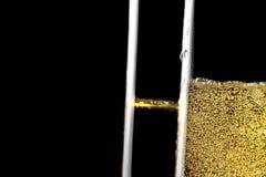 Λεπτομέρεια ενός ζευγαριού των φλαούτων της σαμπάνιας με τις χρυσές φυσαλίδες Στοκ εικόνες με δικαίωμα ελεύθερης χρήσης