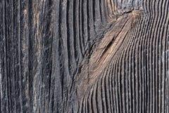 Λεπτομέρεια ενός κόμβου στο σκοτεινό ξύλο Στοκ Εικόνες