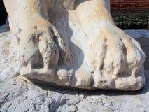 Λεπτομέρεια ενός μαρμάρινου αγάλματος λιονταριών, Βενετία, Ιταλία Στοκ εικόνες με δικαίωμα ελεύθερης χρήσης