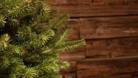Λεπτομέρεια ενός χριστουγεννιάτικου δέντρου έλατου μπροστά από έναν εκλεκτής ποιότητας ξύλινο τοίχο Στοκ φωτογραφία με δικαίωμα ελεύθερης χρήσης