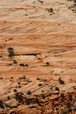 Λεπτομέρεια, διαγώνια τρέχοντα στρώματα του κόκκινου ψαμμίτη Στοκ Εικόνα