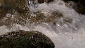 Λεπτομέρεια καταρρακτών της Νίκαιας στο δάσος στην Ισπανία σε μια νεφελώδη ημέρα απόθεμα βίντεο