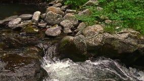 Λεπτομέρεια ποταμών στα Πυρηναία (Ισπανία) Vall de Nuria, κοιλάδα βουνών στα Πυρηναία απόθεμα βίντεο