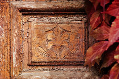 Λεπτομέρεια της εκλεκτής ποιότητας πόρτας με τα φύλλα Στοκ εικόνα με δικαίωμα ελεύθερης χρήσης
