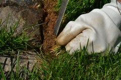 Λεπτομέρεια της κηπουρικής - μια γυναίκα που καλλιεργεί και που βοτανίζει τον κήπο της στοκ εικόνες