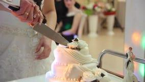 Λεπτομέρεια της κοπής γαμήλιων κέικ από τα newlyweds απόθεμα βίντεο