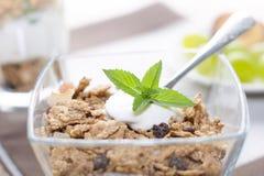 Λεπτομέρεια της μέντας σε ένα κουτάλι με τα δημητριακά γιαουρτιού, φρούτα Στοκ Εικόνα