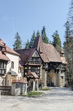 Λεπτομέρεια της περιοχής εδάφους το Castle Peles, δικοί από Regele Mihai (βασιλιάς Michael) της Ρουμανίας, τώρα εργασίες ως μουσε στοκ εικόνα με δικαίωμα ελεύθερης χρήσης