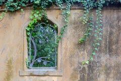 Λεπτομέρεια τοίχων κήπων Στοκ Εικόνα