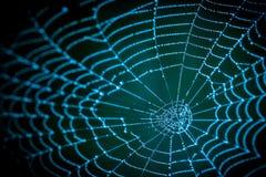 Λεπτομέρεια του απόκοσμου ιστού αράχνης σε ένα σκοτεινό υπόβαθρο νύχτας Στοκ Φωτογραφία