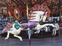 Λεπτομέρεια του ιπποδρομίου που χαρακτηρίζει το άλογο Στοκ φωτογραφίες με δικαίωμα ελεύθερης χρήσης