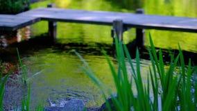 Λεπτομέρεια του νερού ροών στο υπόβαθρο λιμνών απόθεμα βίντεο