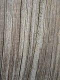 Λεπτομέρεια του παλαιού ραγισμένου graying ξύλου Στοκ Φωτογραφίες