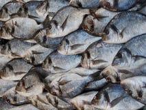 Λεπτομέρεια του πώλησης του σωρού των ψαριών στην αγορά ψαριών με σε μια τακτική μόδα στοκ φωτογραφίες