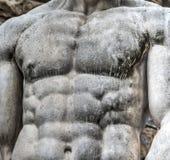 Λεπτομέρεια του στήθους του αγάλματος Hercules Στοκ φωτογραφίες με δικαίωμα ελεύθερης χρήσης