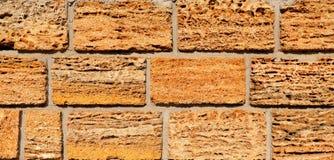 Λεπτομέρεια του τοίχου σπιτιών Υπόβαθρο φιαγμένο από να κόψει το βράχο κοχυλιών Στοκ Εικόνες