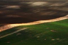 Λεπτομέρεια των πράσινων τομέων με τους όμορφους ριγωτούς λόφους Ζωηρόχρωμη κοιλάδα άνοιξη στην περιοχή της νότιας Μοραβία, της Τ Στοκ Φωτογραφία