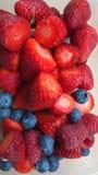Λεπτομέρεια των φρούτων Στοκ Εικόνα