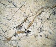 Λεπτομέρεια υφαμένες στις ασβεστόλιθος φλέβες χαλαζία Στοκ Εικόνες