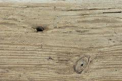 Λεπτομέρεια Driftwood Στοκ εικόνες με δικαίωμα ελεύθερης χρήσης
