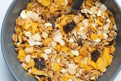 Λεπτομέρεια Granola Μακρο βλαστός Στοκ εικόνες με δικαίωμα ελεύθερης χρήσης
