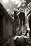 Λεπτομέρεια Thom Angkor Στοκ φωτογραφία με δικαίωμα ελεύθερης χρήσης