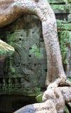 Λεπτομέρεια Wat Angkor Στοκ εικόνα με δικαίωμα ελεύθερης χρήσης