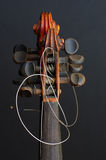 Λεπτομέρειες βιολιών Στοκ εικόνα με δικαίωμα ελεύθερης χρήσης
