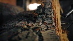 Λεπτομέρειες της αφαίρεσης του φλοιού από μια σύνδεση ένα πριονιστήριο στοκ φωτογραφία