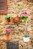 Λεπτομέρειες της μεσαιωνικής πόλης του SAN Gimignano - διακοσμητικά δοχεία λουλουδιών που κρεμούν σε έναν τοίχο Στοκ Εικόνα
