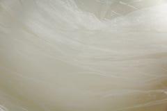 Λεπτομέρειες του υφάσματος φορεμάτων νυφών και του όμορφου weddi κεντητικής Στοκ Φωτογραφίες