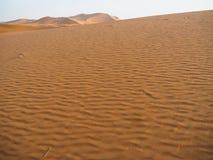 Λεπτομέρειες των αμμόλοφων ερήμων Σαχάρας στο Μαρόκο Στοκ φωτογραφίες με δικαίωμα ελεύθερης χρήσης