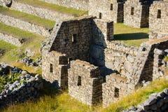 Λεπτομέρειες Picchu Machu Στοκ Εικόνες